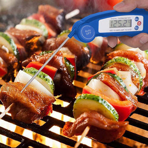 Folding Digital Meat Thermometer