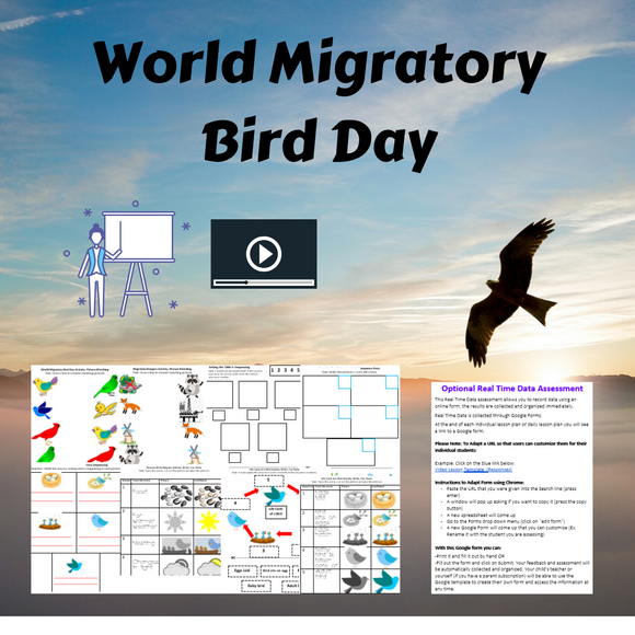 World Migratory Bird Day with 1 Video & 9 Activities