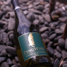 Load image into Gallery viewer, Pengwine Premium Magellan 2013 White Wine Chardonnay 750ml