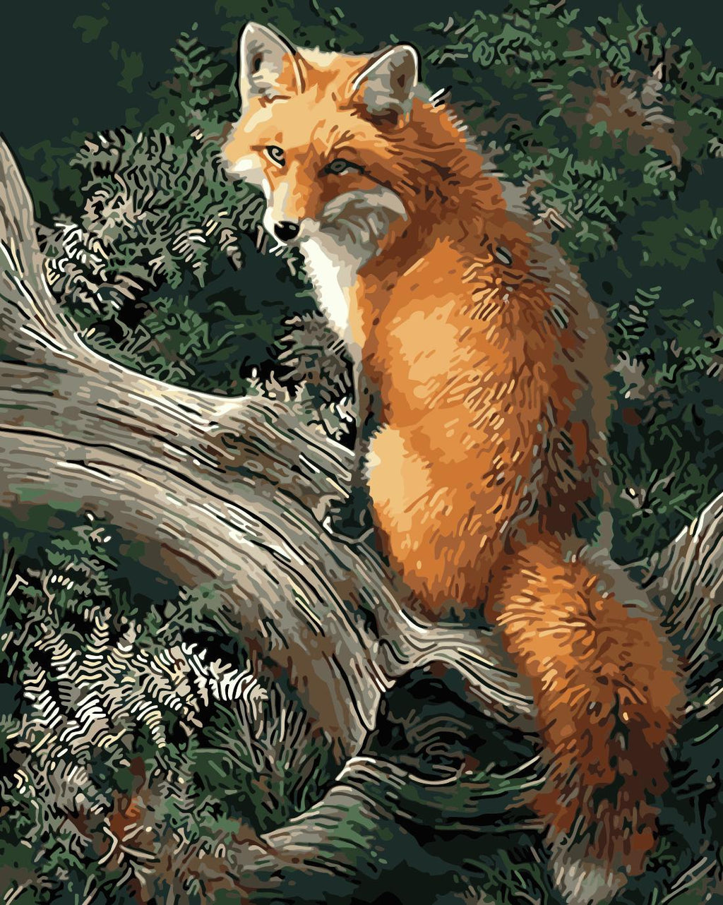 Animal Fox Paint By Numbers Kits UK For Adult HQD1247