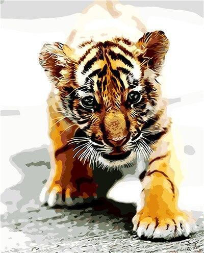 Animal Tiger Paint By Numbers Kits UK For Adult HQD1262