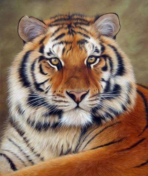 Animal Tiger Paint By Numbers Kits UK For Adult HQD1268
