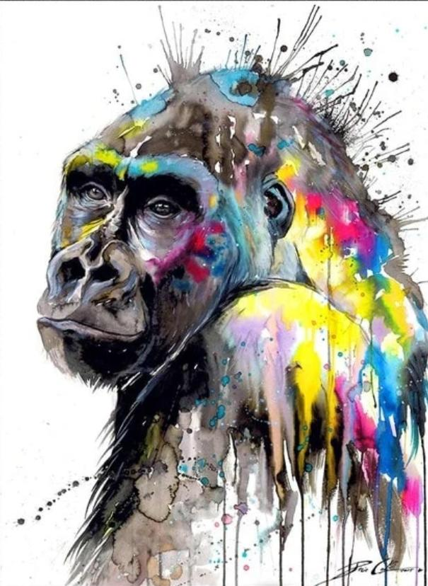 Animal Monkey Paint By Numbers Kits UK For Adult HQD1274