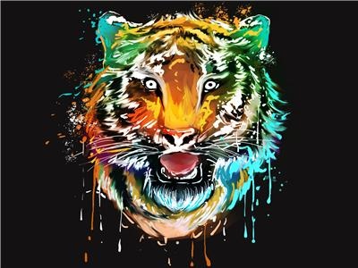 Animal Tiger Paint By Numbers Kits UK For Adult PH9581