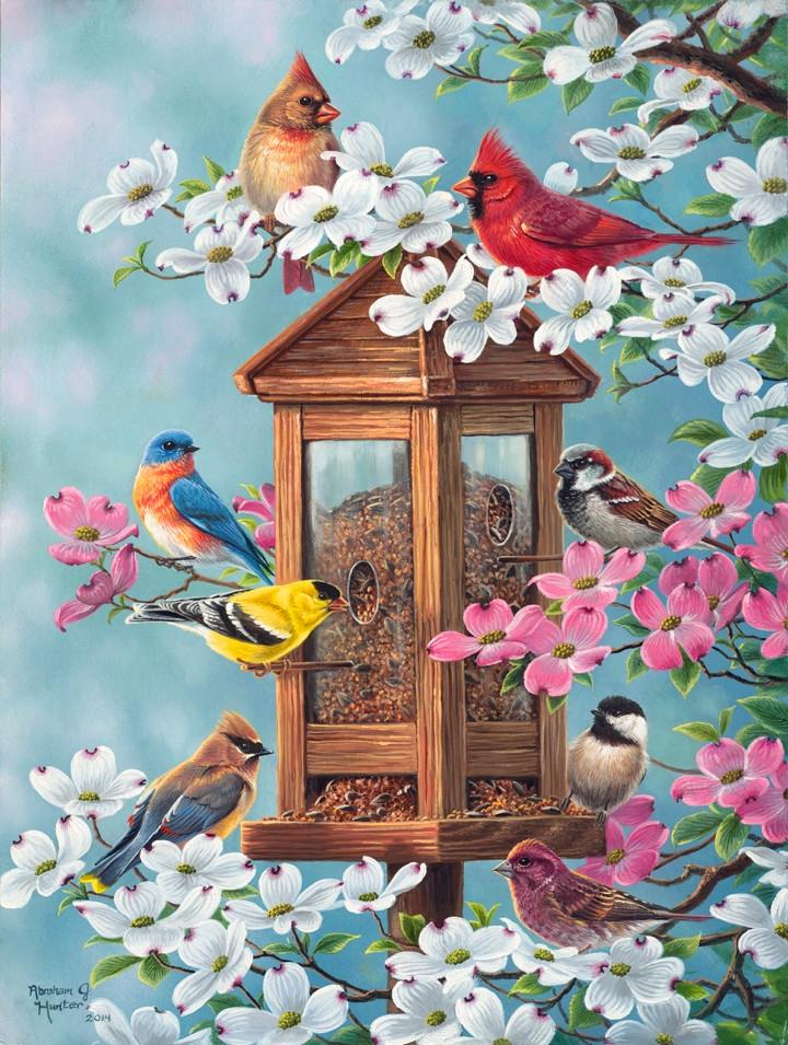 Bird Paint By Numbers Kits UK For Adult RSB8348