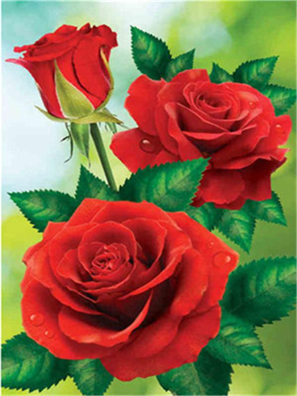 Flower Paint By Numbers Kits UK For Adult Y5434