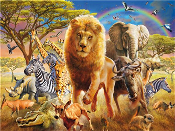 Animal Paint By Numbers Kits UK For Adult Y5488