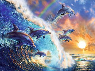 Animal Dolphin Paint By Numbers Kits UK For Adult Y5743