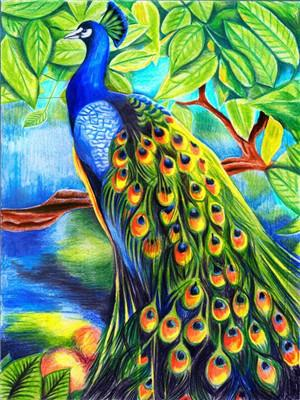 Bird Paint By Numbers Kits UK For Adult Y5807