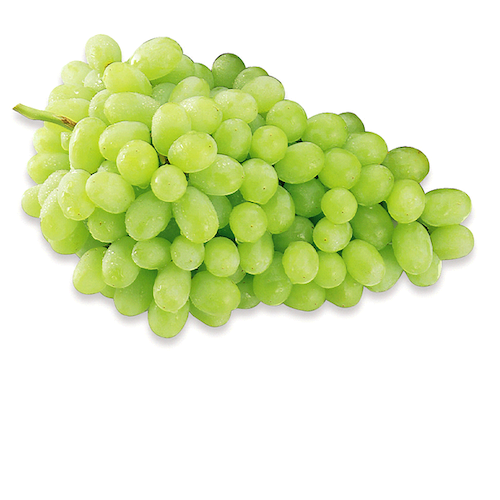 Green Seedless Grapes by LBS