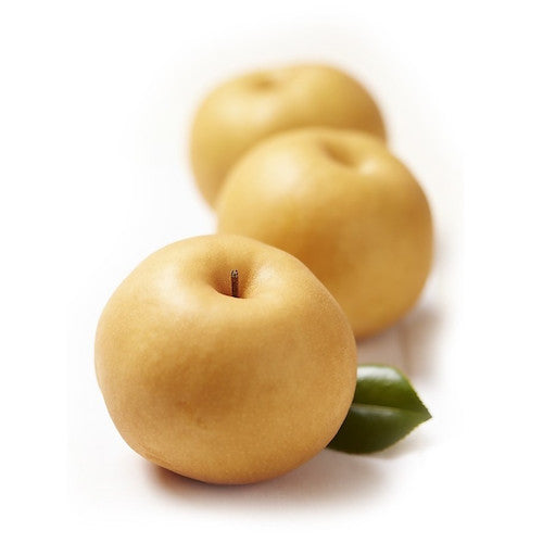 Korean Pear by EACH