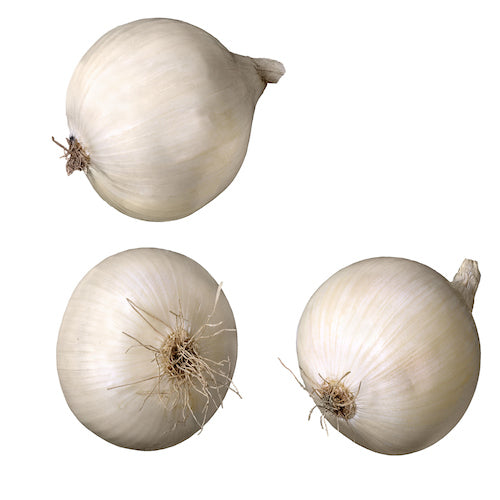 Pearl Onion White by EACH