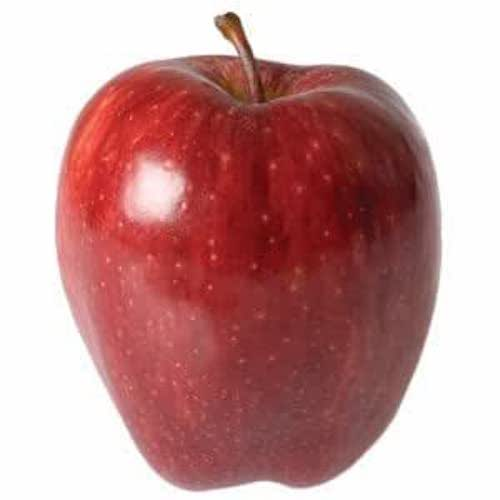Red Delicious Apple by LB