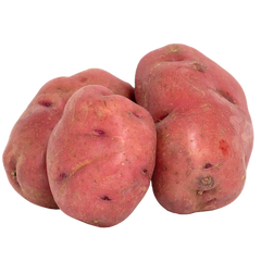 Red Potato by LBS