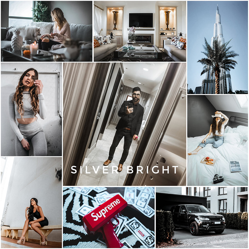 Silver Bright - (1) Lightroom presets - EZ PRESETS