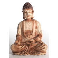 Buddha Giving