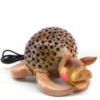 Lamp-coconut shell-sleeping pig