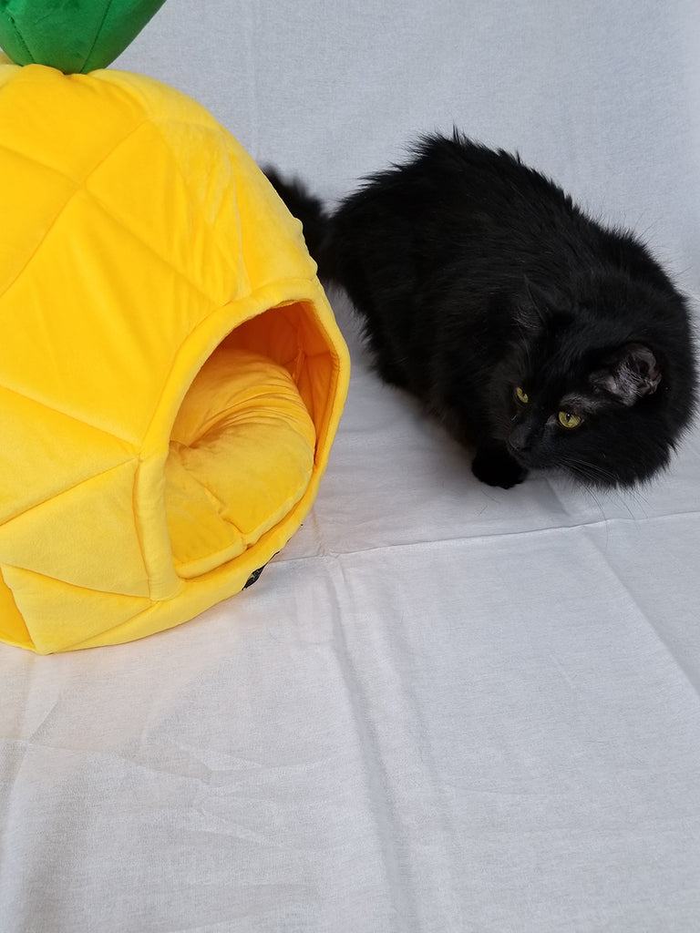 Pineapple Shaped Cozy Cat Bed