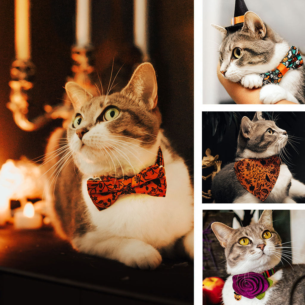 Halloween Cat Collars, Bow Ties, Bandanas and More