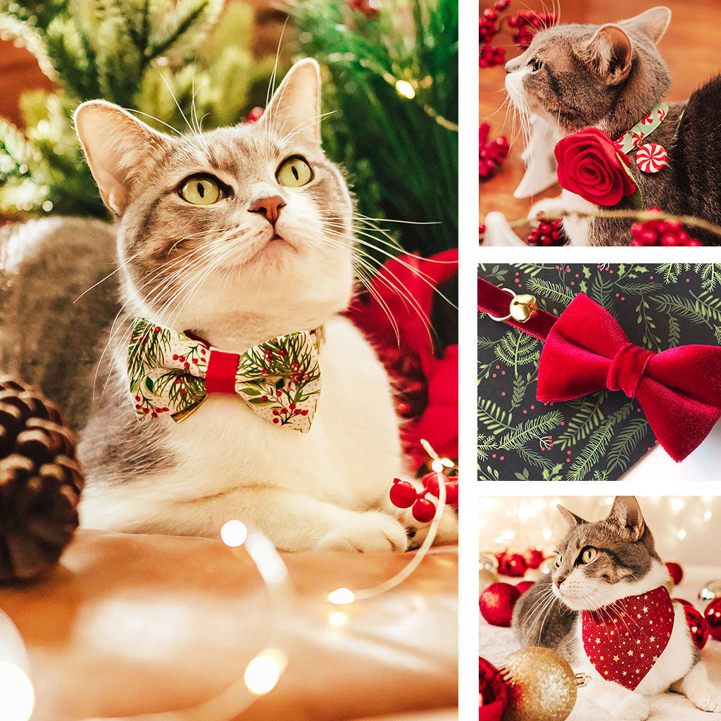 Holiday Cat Collars, Bow Ties, Bandanas and More