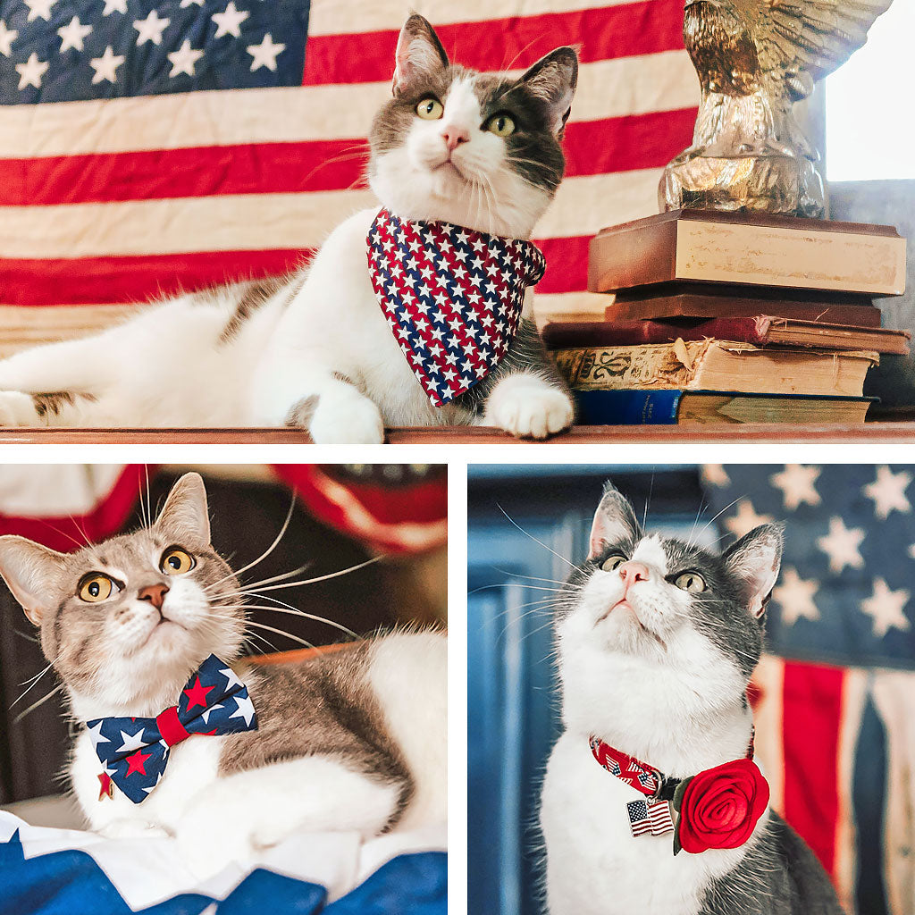 Independence Day Collection - 4th of July Cat Collars, Bow Ties, Bandanas & Accessories