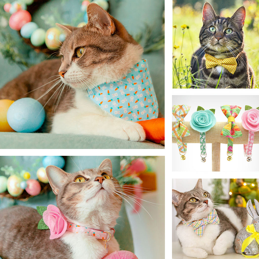 Easter Cat Collars, Bow Ties, Bandanas & Accessories