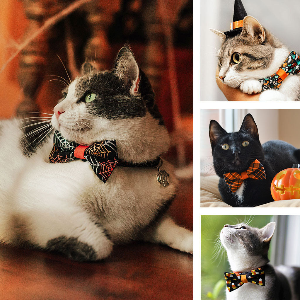 Halloween Collars & Bow Ties for Cats, Kittens and Little Dogs from Made By Cleo