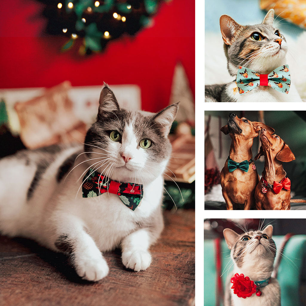 Holiday Cat Collars & Dog Collars + Bow Ties