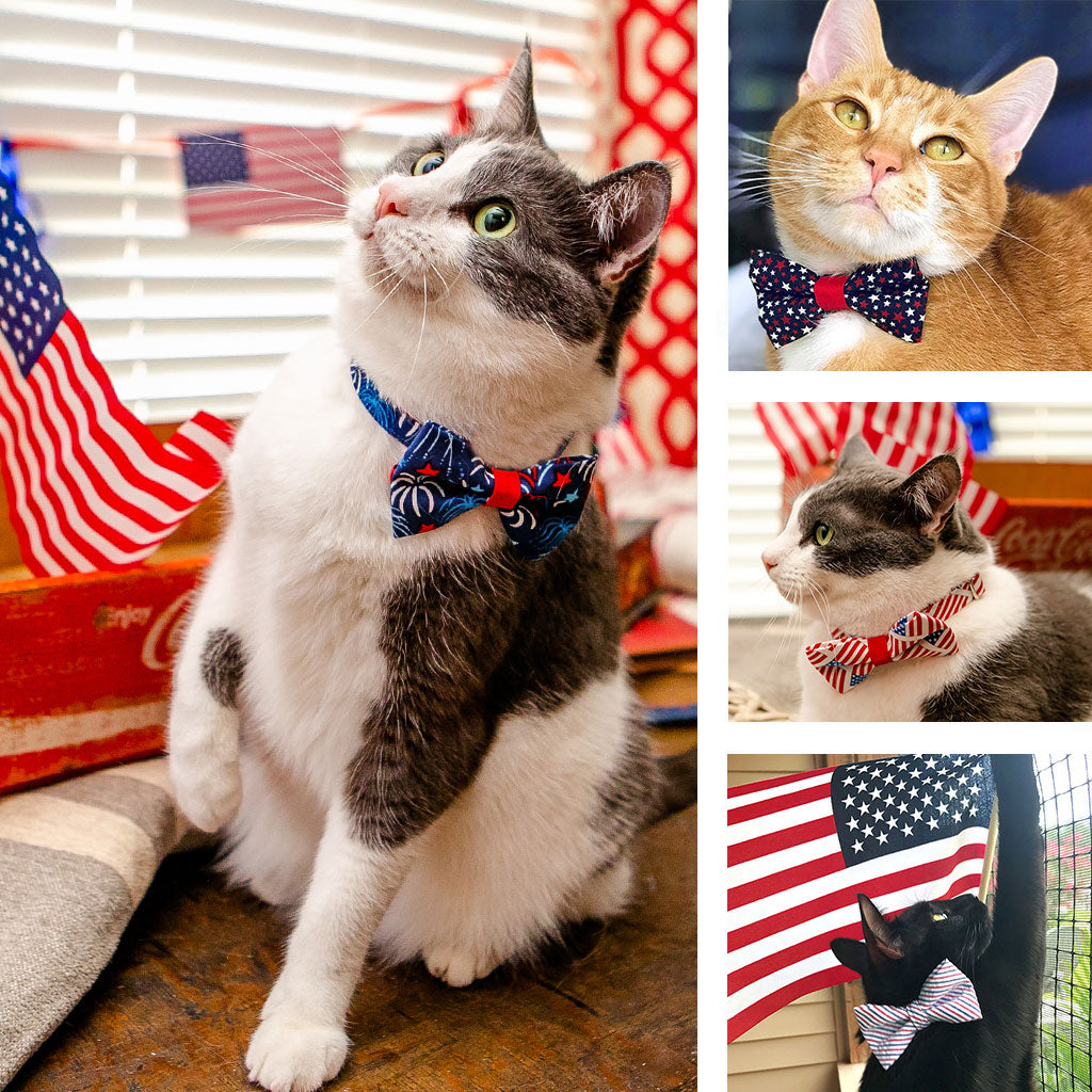 Patriotic Cat Collars & Bow Ties for Fourth of July / Independence Day