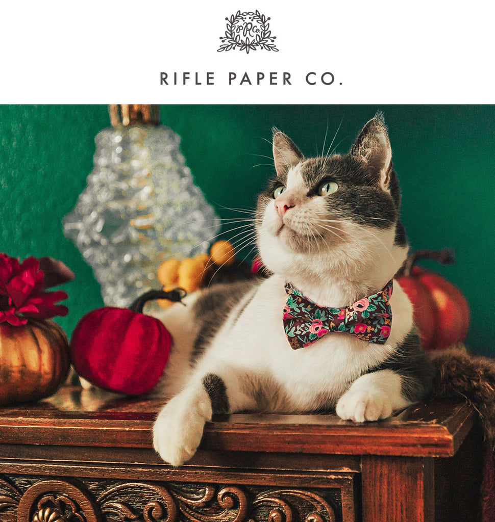 Rifle Paper Co® Cat Collars, Bow Ties, Bandanas and More