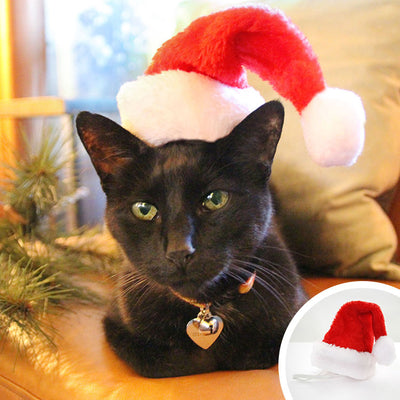 Pet Santa Hat - Christmas Photo Prop | X-Small Mini Size for Cats, Kittens + Small Dogs