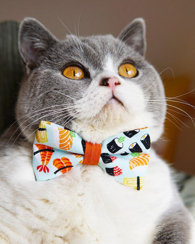 "Sushi Cat Bow Tie - ""Sushi Date"" - Bow Tie for Cat, Kitten or Small Dog - Removable, One Size"