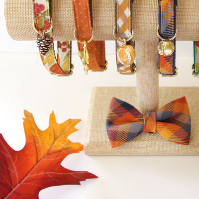 "Fall Cat Collar - ""Pumpkin Spice"" - Burnt Orange & Gold Dots - Breakaway or Non-Breakaway - Thanksgiving - Cats, Kittens + Small Dogs"