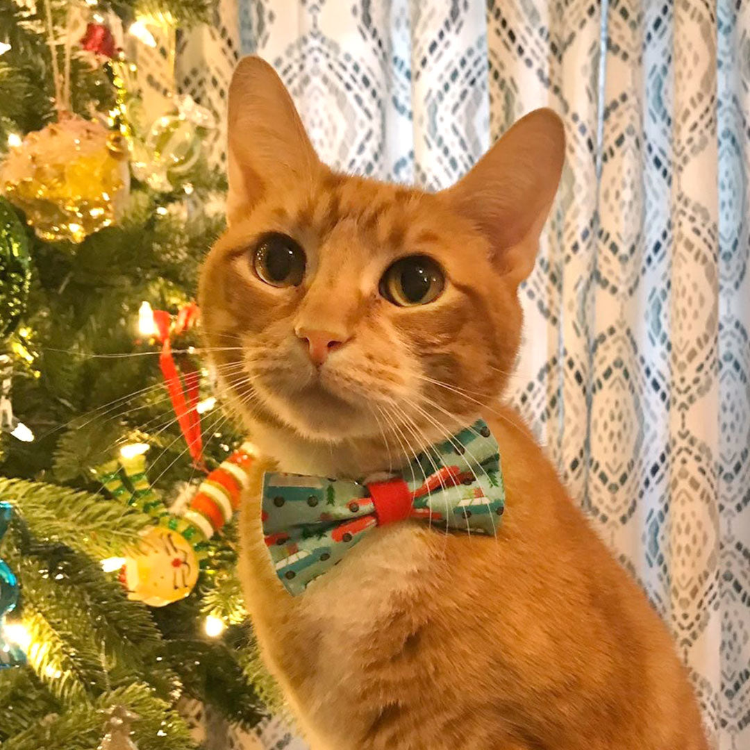 Holiday Pet Bow Tie Christmas Vacation Trees On Cars Bowtie For Made By Cleo