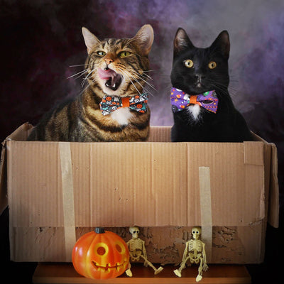 "Halloween Pet Bow Tie - ""Here for the Boos"" - Ghosts, Pumpkins & Skulls Bowtie / For Cats + Small Dogs / Removable (One Size)"