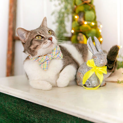 "Pet Bow Tie - ""Picnic"" - Spring Yellow Plaid Bow Tie / Easter, Spring / For Cats + Small Dogs (One Size)"