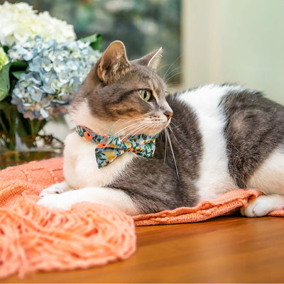 "Rifle Paper Co® Bow Tie Cat Collar Set - ""Ambrose"" - Periwinkle Floral Cat Collar w/ Matching Bowtie / Spring + Summer / Cat, Kitten, Small Dog Sizes"
