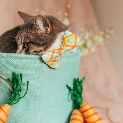 "Easter Cat Bow Tie - ""Carrot Patch"" - Pastel & Orange Spring Plaid Bowtie / For Cats + Small Dogs / Removable (One Size)"