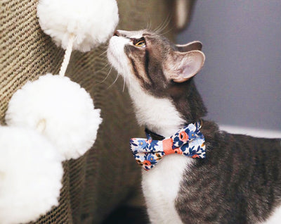 "Floral Cat Bow Tie - ""Amelie"" - Rifle Paper Co® Fabric/Cat Collar Bow Tie/Small Dog Bow Tie - Removable (One Size)"