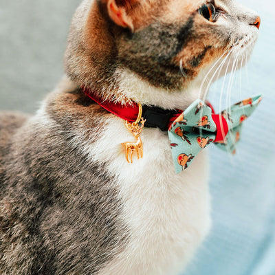 "Velvet Cat Collar - ""Garnet Red"" - Luxe Red Velvet - Breakaway Buckle or Non-Breakaway - Cat + Small Dog Sizes"