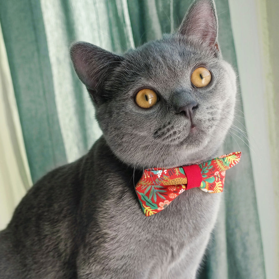 "Pet Bow Tie - ""Jungle Original (Red w/ Red Center)"" - Rifle Paper Co® Tropical Pet Bow Tie - Removable / One Size"