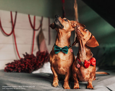"Pet Bow Tie - ""Green Velvet"" - Rich Lustrous Dark Green Soft Velvet - Christmas / Holiday - Detachable Bowtie for Cats + Dogs"