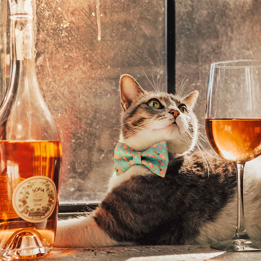 "Pet Bow Tie - ""Rosé All Day"" - Pink Rose Wine on Mint Bow Tie for Cat / Spring + Summer / For Cats + Small Dogs (One Size)"