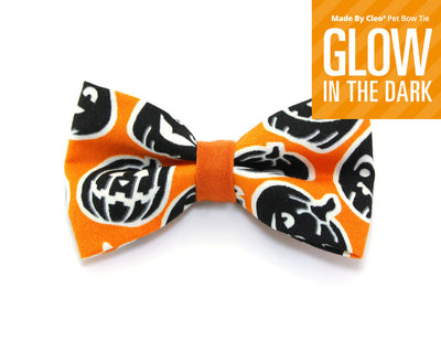 "Halloween Cat Bow Tie - ""Sleepy Hollow"" - Glow in the Dark Pumpkin - Cat Bowtie/Kitten Bow Tie/Small Dog Bow Tie - Removable (One Size)"