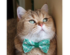 "Cat Bow Tie - ""Aztec Green"" - Boho Modern / Tribal - Bowtie / For Cats + Small Dogs / Removable (One Size)"