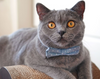 "Chambray Cat Bow Tie - ""Merritt"" - Light Blue Dot Cat Collar Bow Tie / Kitten Bow Tie / Small Dog Bowtie / Wedding / Removable (One Size)"