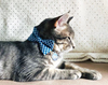 "Bow Tie Cat Collar Set - ""Atlantic"" - Royal Blue Gingham Plaid Cat Collar w/ Matching Bow Tie (Removable)"