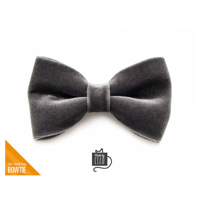 "Velvet Pet Bow Tie - ""Storm Gray"" - Dark Gray Velvet Bowtie / Wedding / For Cats + Small Dogs / Removable (One Size)"