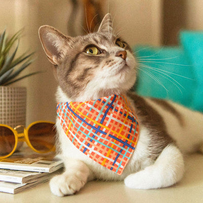 "Pet Bandana - ""Wanderlust"" - Modern Waffle Cone Plaid Bandana for Cat + Small Dog / Slide-on Bandana / Over-the-Collar (One Size)"