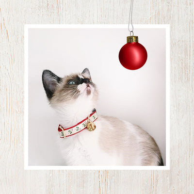 "Holiday Cat Collar - ""Yuletide Ruby"" - Festive Candy Canes on Red"